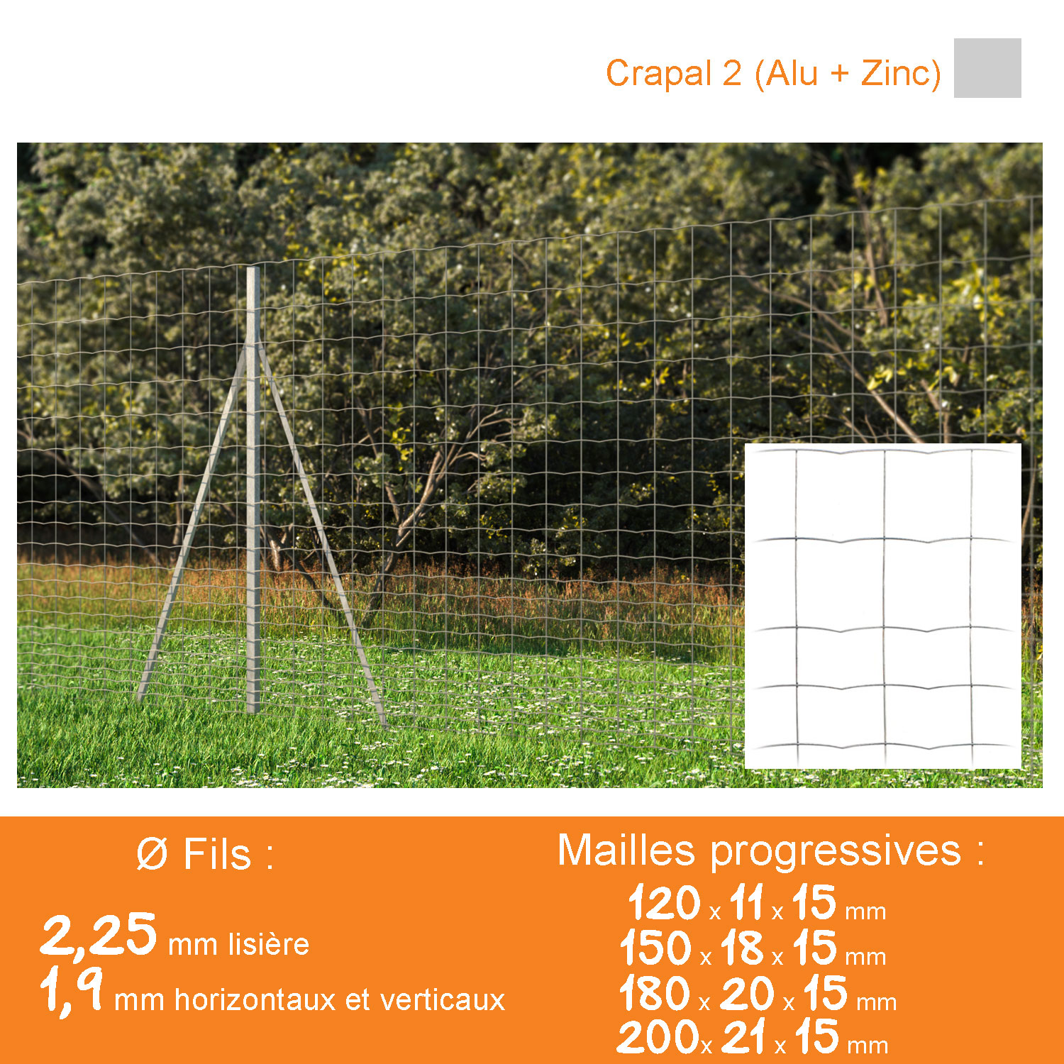 Grillage soudé ATAK MEDIUM Mailles progressives 120 x 11 x 15 mm - Crapal Ø 2,25 - 1,9 mm - Lg. 50 m